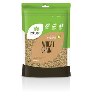 Wheat Grain Organic